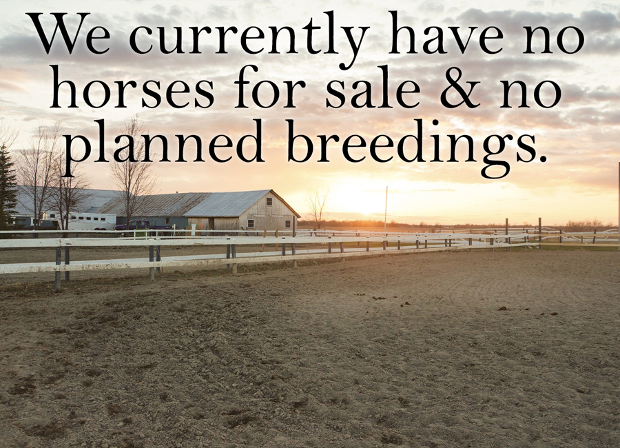 information on sales and breeding